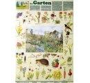Bicenóza záhrad