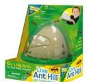 Mravenisko malé