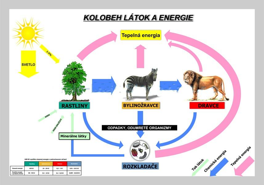 Kolobeh látok a energie, nástenná tabuľa